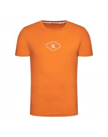 Calvin Klein camiseta con estampado  monotriangulo J30J317448 SEK-YAF
